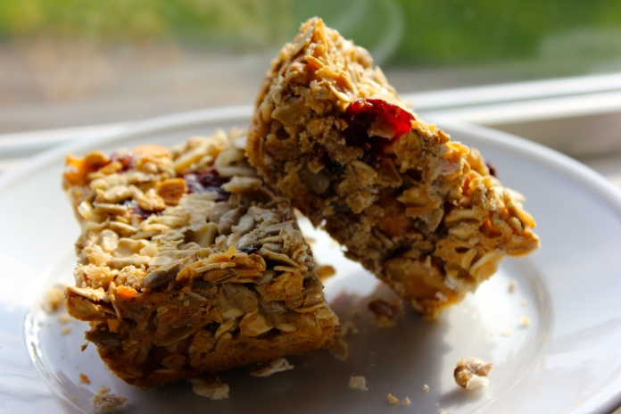 Oatmeal, Coconut & Cranberry Breakfast Bars      www.morewinelesswhines.com