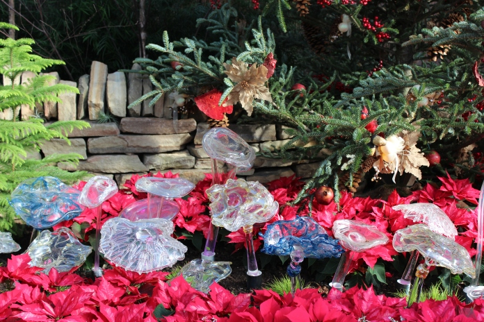 Beautiful Display at Phipps Conservatory    www.morewinelesswhines.com