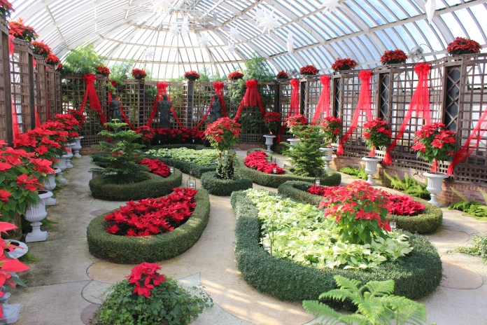 Beautiful spin on a classic boxwood garden with a poinsettia twist at Phipps Conservatory   www.morewinelesswhines.com